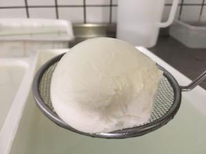 Mozzarella di Gioia del Colle