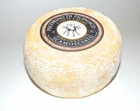 Pecorino di Picinisco D.O.P.