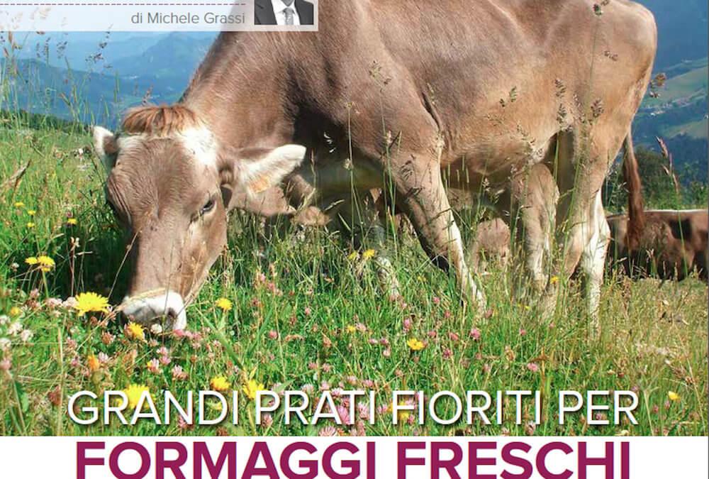 Grandi prati fioriti per formaggi freschi o stagionati aromatizzati