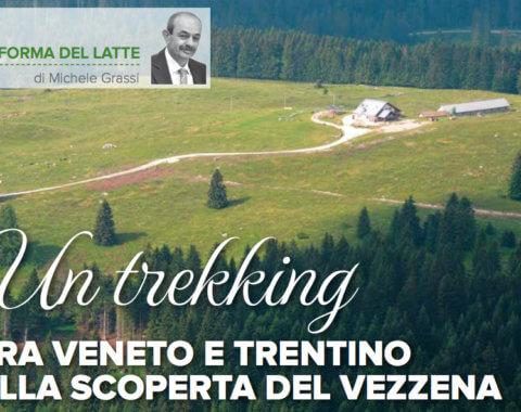 Un trekking tra Veneto e Trentino alla scoperta del Vezzena
