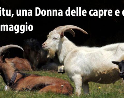 Agitu Gudeta, una Donna delle capre e del formaggio